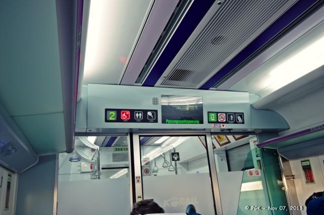 pica goes to korea – day 5 – 07 november 2013